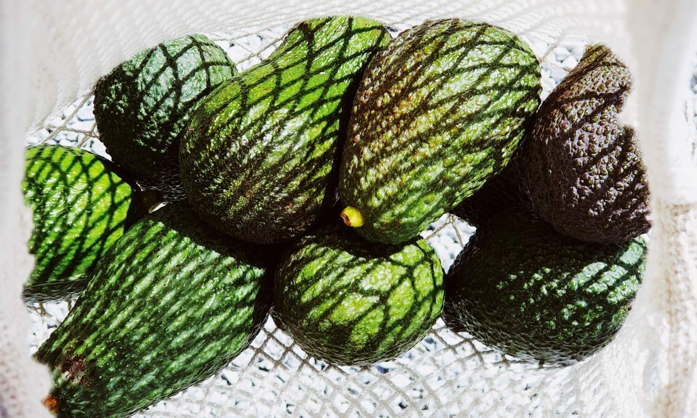 An avocado recipe for healthy skin